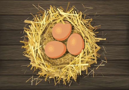 roost: Bird straw nest with eggs on wood background. Vector illustration