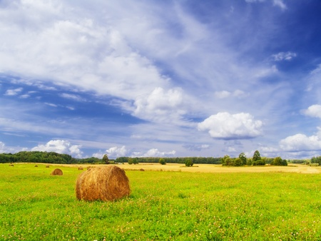 Summer rural landscape with a haystack. photo