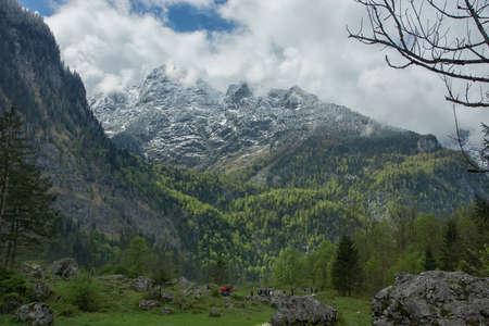 snow covered mountains: Snow covered mountains and rocky peaks in Alps