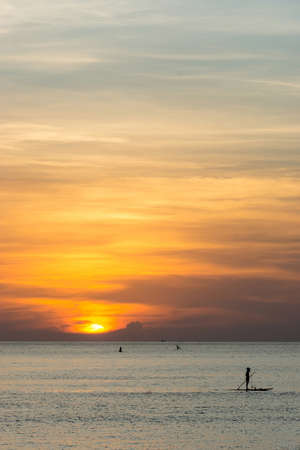 boarders: Paddle boarders watching beautiful sunset