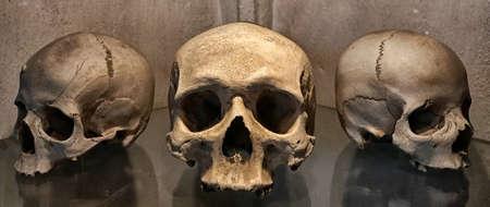 古代人間の頭蓋骨と骨の装飾セドレツ、チェコ共和国です。