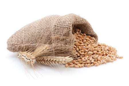 Grains in small burlap sack isolated on white background. Stock Photo