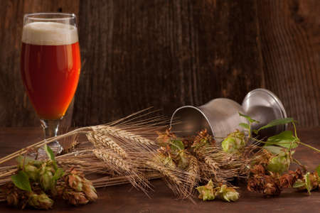 A glass of dark beer with beer foam hat. In the foreground ears of barley and fresh hops - brewing raw materials. Focus on barley ears.
