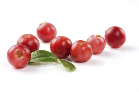 Cranberries isolated on white background  Natural source of vitamins  Macro, shallow focus  photo