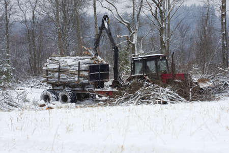 forwarder: Forestry logging vehicle  forwarder  in the wintertime