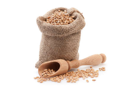 Grains in small burlap sack and wood scoop isolated on white background Stock Photo - 18190364