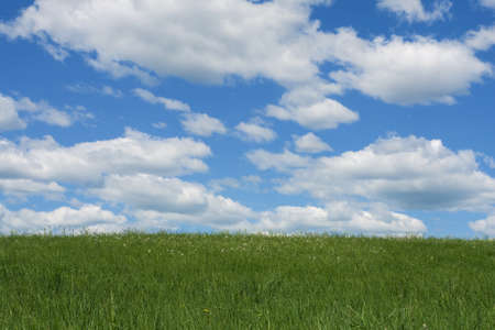 green field, the blue sky and white clouds Stock Photo