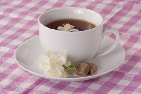 Cup of Jasmine tea and brown sugar cubes on a pink checkered tablecloth photo