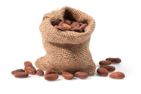 Close up view of Cocoa bean on bag  Shallow depth of field