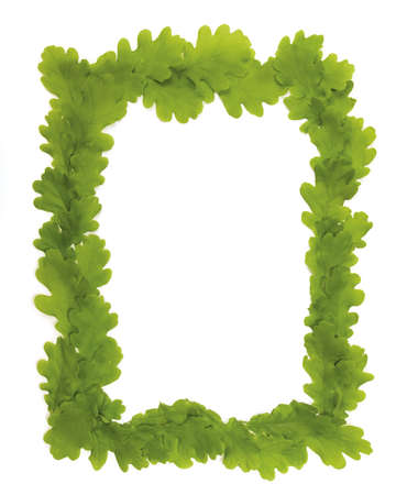 Oak leaf frame with space for text or what you need...