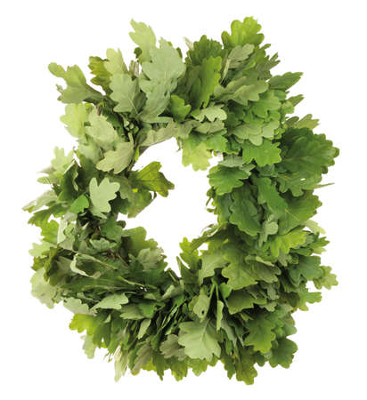 Wreath of oak leaves. Isolated on white. Latvian Midsummer holiday symbol. Stock Photo