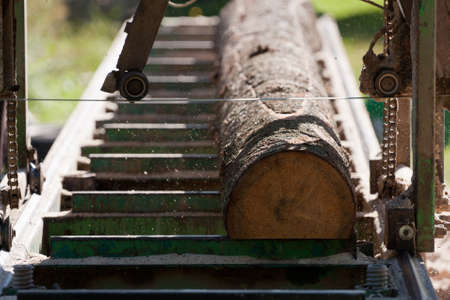 Portable sawmill processing raw timber to planks photo
