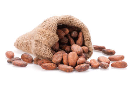 Raw cocoa beans spilling out of a burlap bag. Shallow depth of field.