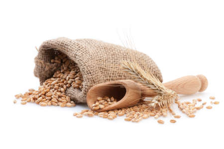 Grains in small burlap sack and wood scoop isolated on white background. Stock Photo - 18332623