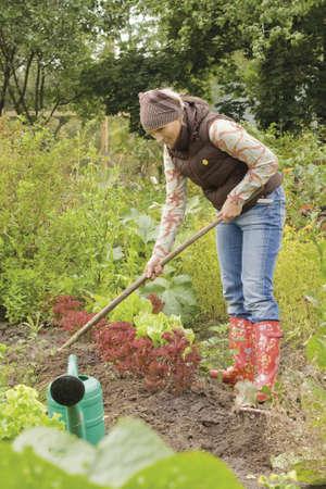 女性彼女の有機野菜の庭の草取り