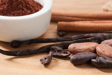 ココアの原料カカオ豆と粉、シナモン、バニラの鞘、砂糖の立方体を飲む 写真素材 - 19095678