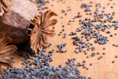 Poppy seeds and poppy heads on a wooden table
