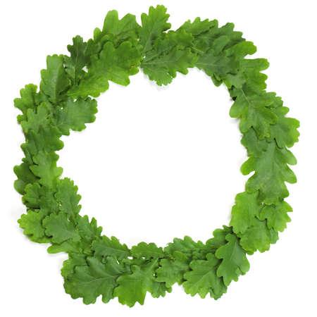 カシの花輪葉分離された白いラトビア真夏ホリデー シンボル 写真素材 - 20271700