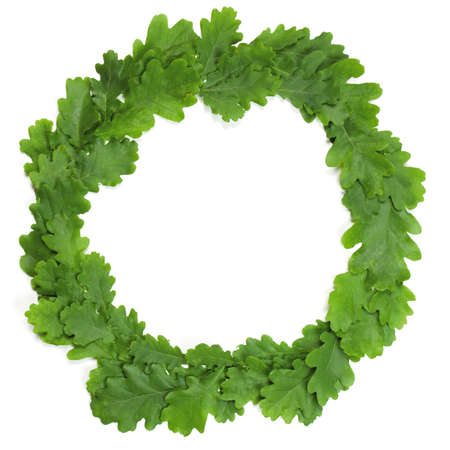 Wreath of oak leaves  Isolated on white  Latvian Midsummer holiday symbol  Stock Photo