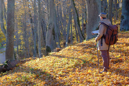 Young man traveler exploring the map in autumn forest. Stock Photo