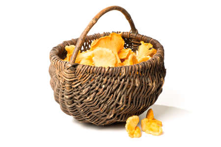 cantharellus cibarius: basket with chanterelles (Cantharellus cibarius) isolated on white Stock Photo