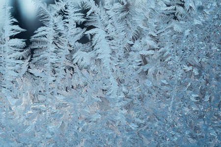 Ice flowers on window glass. Frozen ice pattern background. close up.