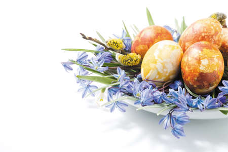 colorful easter eggs and spring flower composition Stock Photo