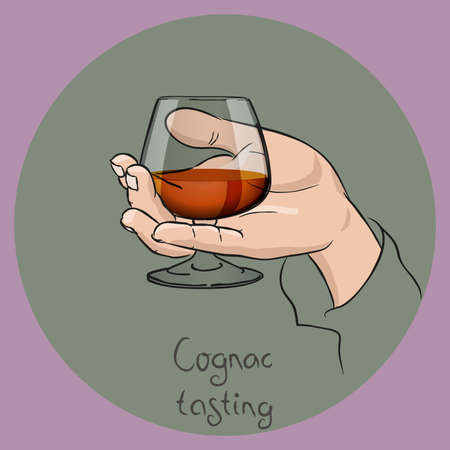 Female or male hand holding a cognac glass. cognac/brandy tasting. Vector drawing. 写真素材 - 127163984