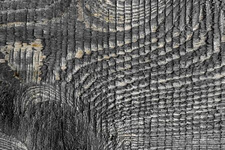 natural old wood texture grey color striped relief Stockfoto