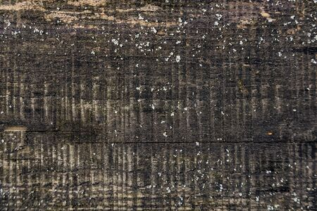 Texture of old wood saw boards grey natural relief