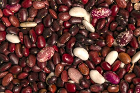 bean beans dark colors top view closeup