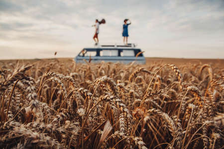Young couple man with a guitar and woman in a hat are standing on the roof of a car in a wheat field.Focus on the foreground. Travel and adventur 写真素材