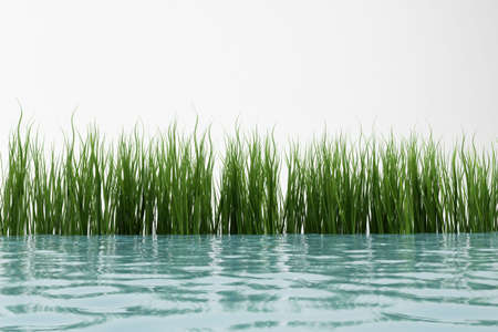 max: 3d model grass and water. made in 3ds max