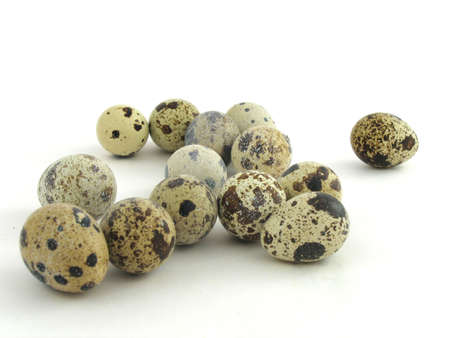 coocing: Group quail eggs
