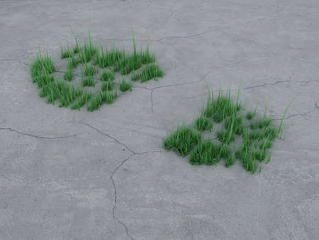 Footprint on stone and grass. Ecology concept Stock Photo