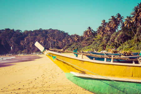 mangroves: Fishing boats on a tropical beach with palm trees and mangroves in the background