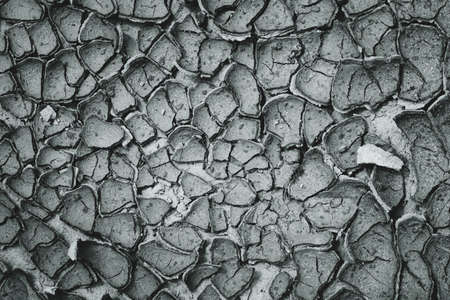 Cracked ground surface close up. Global warming and drought concept. Abstract texture background. Black and white Stock Photo