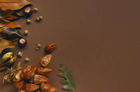 Autumn and fall composition made of dried leaves, chestnuts and acorns. Creative layout. Flat lay, top view, copy space. Trendy colors Foto de archivo