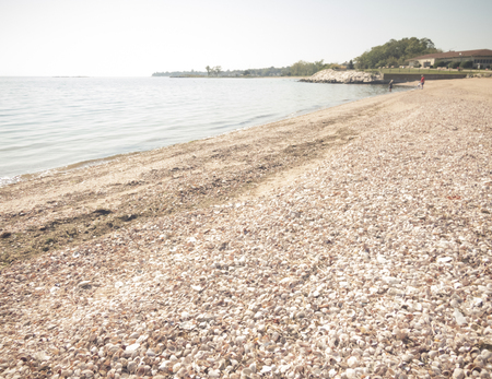 Peaceful calm waters at this New England beach,uniquely created with crushed shells of all types of small species and clean dark sand.