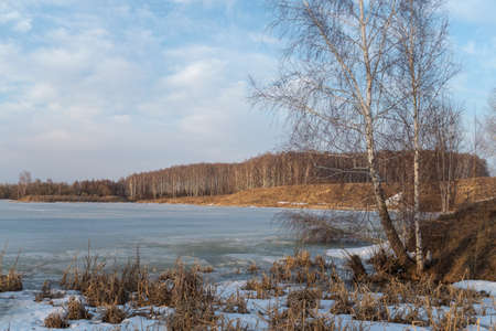 thawed: Spring landscape with a view of the lake under the ice and trees on the banks