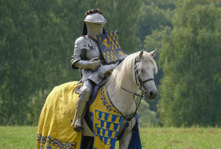 Medieval knight in metal armor on a horse in a field Stock Photo