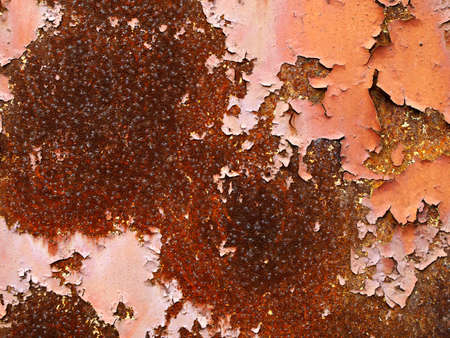 Grunge rusty metal with peeling, cracked paint    photo
