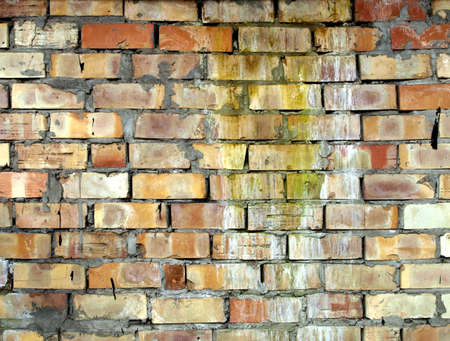 Yellow brick wall photo