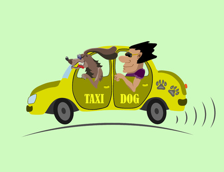 yellow taxi: Dog taxi driver to take the customer to the address Illustration