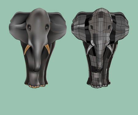 one of a kind: big, beautiful and strong elephant. two styles. He stands and stares. Isolated on background. Illustration