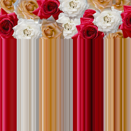 Bright colored roses. from them comes a curtain of the same color.