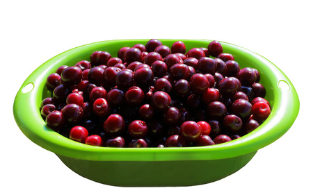 Ripe, bright cherry in a bowl. isolate on white background.vegetarianism and vitamins