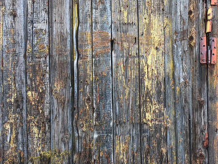 Old boards closeup. Rough paint different types of wood. for the background and your projects.