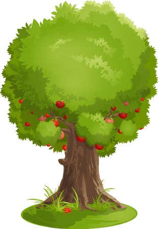 apple-tree Vector