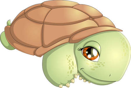 small turtle Vector